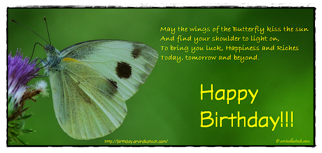 Birthday Card, Irish Blessing, wings, butterfly, kiss, sun