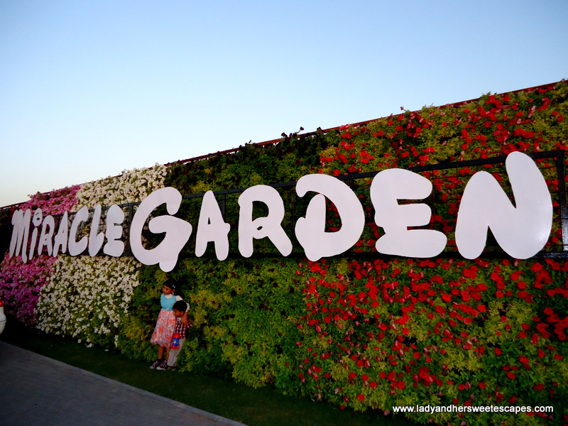 dubai miracle garden a paradise on earth lady her sweet escapes