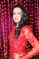 Catherine Tresa in red transparent gown at Zee Telugu Apsara Awards 2017 03.JPG