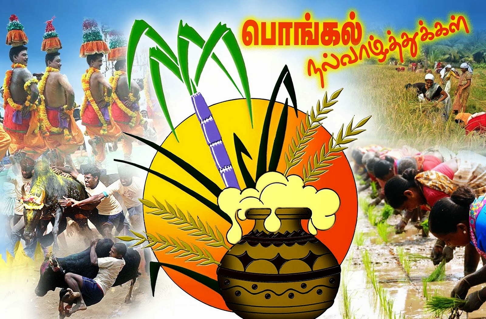 Pongal Recipes A Very Happy Pongal To Everyone Happy