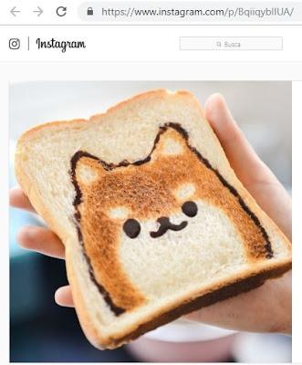 descargar fotos de instagram online gratis