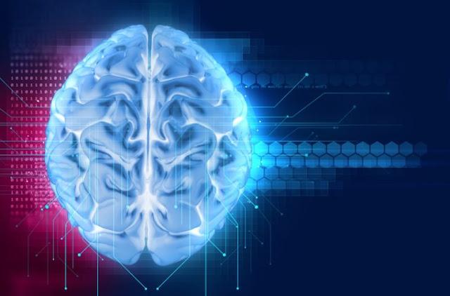 Новая теория: сознание не находится в мозге или в этом измерении. Brain-759x500