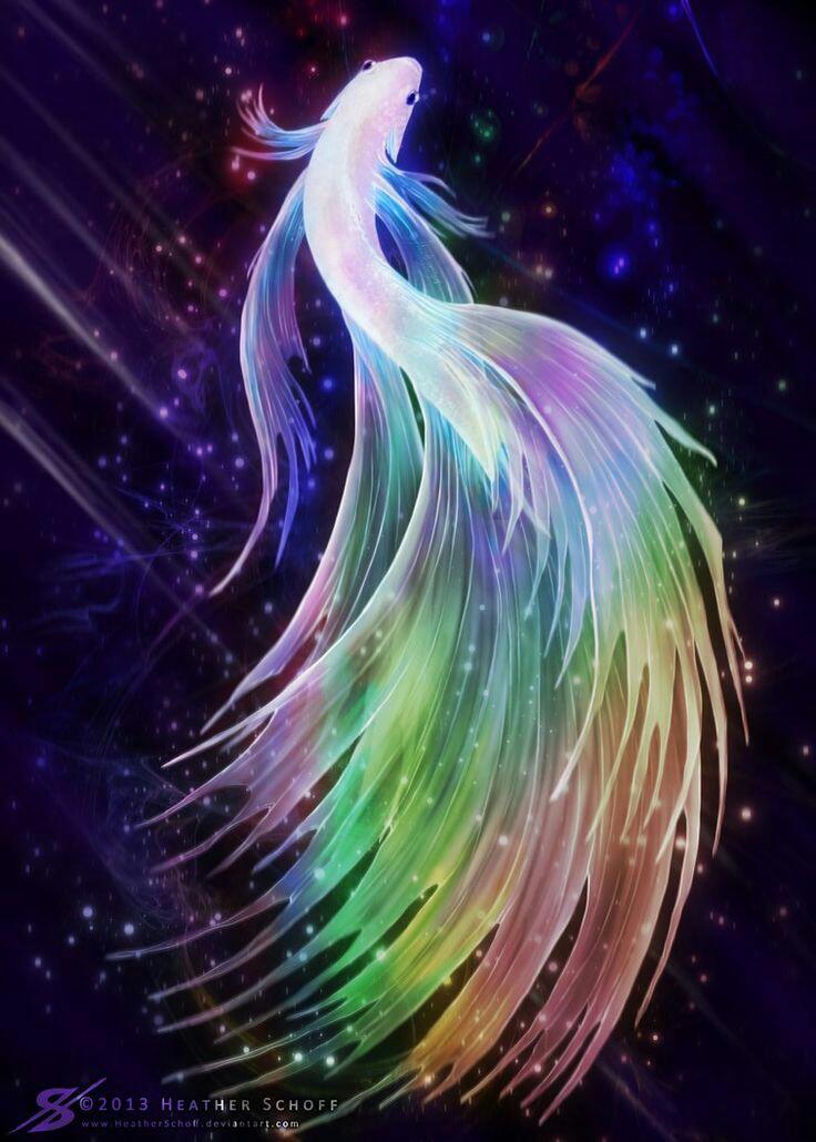 Lukisan Ikan Cupang Hitam Putih | Cikimm.com