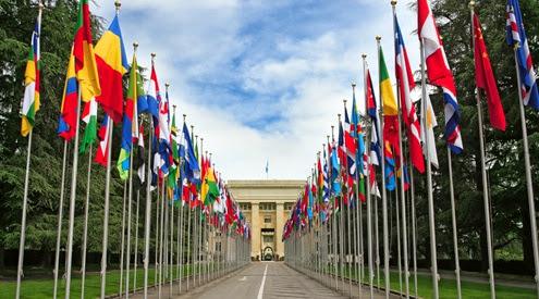 Organizaciones internacionales y Derecho internacional