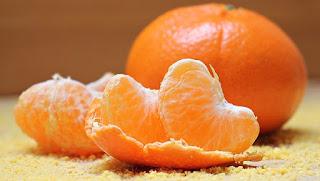 Jeruk Makanan Untuk Tupai