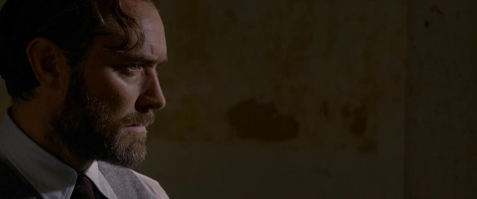 Assista agora o segundo trailer para Animais Fantásticos: Os Crimes de Grindelwald.