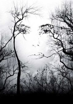 Visual Illusion of a Face in a Forest