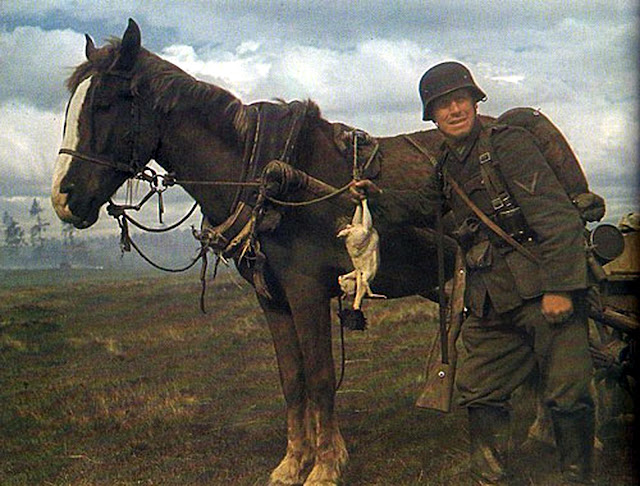 World War II in Color: German Soldier with His Horse and ...