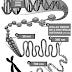 Citologia: Núcleos e Cromossomos - Questões de Vestibulares