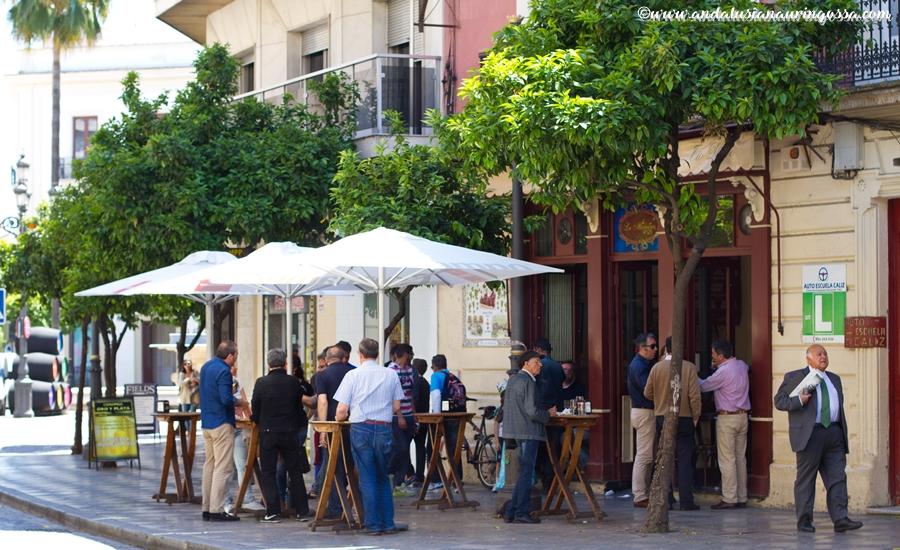 Andalusian auringossa_ruokablogi_viiniblogi_sherry_viinimaailman vaarinymmarretty suuruus