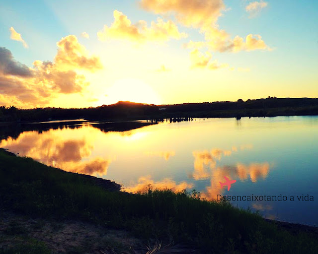 Reserva Ecológica da Sapiranga | Praia do Forte