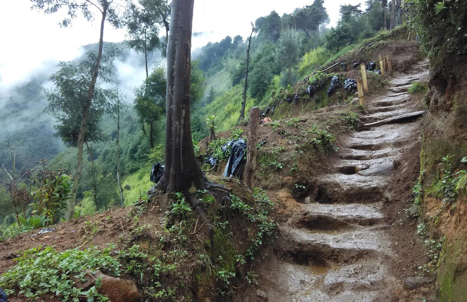 Gunung Prau sedikit licin dari jalur pendakian