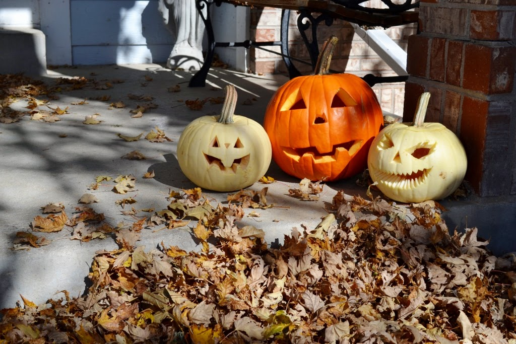 Wordless Wednesday: Pumpkin Time, Over The Apple Tree