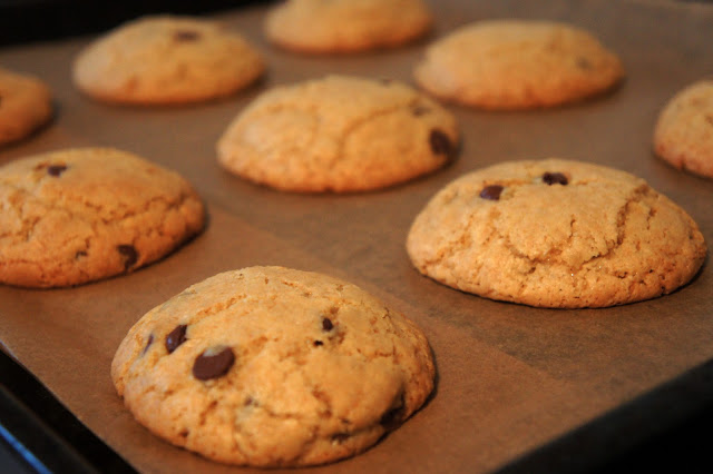 Chocolate Chip Cookie Mix von Bob's Red Mill