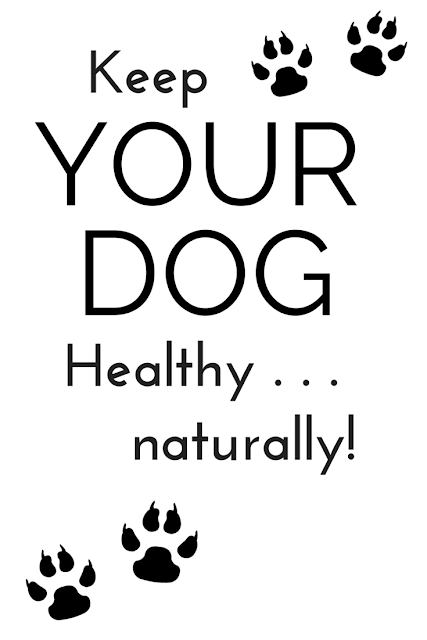 Extend the extra love to your best companion and loyal friend and take steps to ensure your dog's best health with the easy, natural, chemical-free methods here.