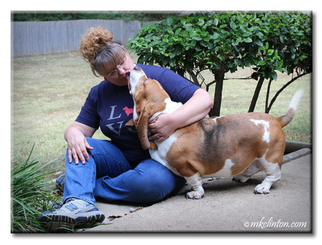 I love Basset Hound kisses. ♥