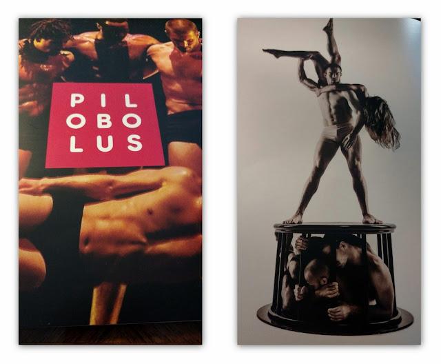 """#Crítica """"Pilobolus"""" Un espectáculo diferente en el Teatro Coliseo"""