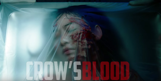 http://akb48-daily.blogspot.com/2016/07/crows-blood-new-trailer.html