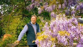 Love Your Garden Ep.4 - Series 5