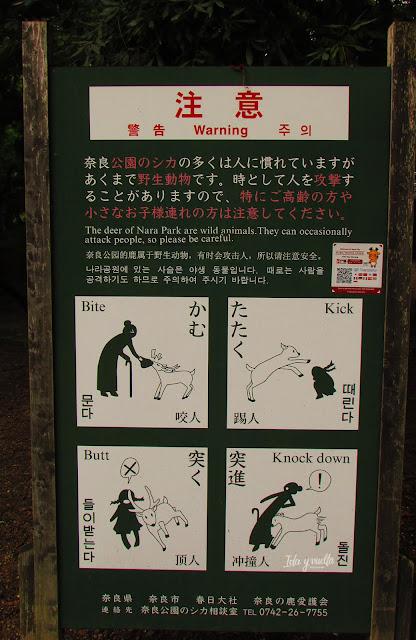 Cuidado con los ciervos
