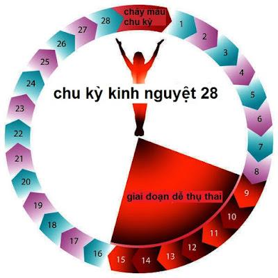 Thế nào là chu kỳ kinh nguyệt bình thường-https://moingaysongkhoe.blogspot.com/