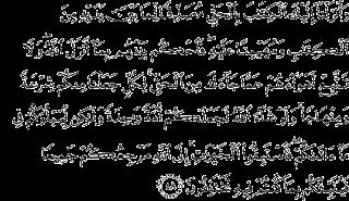 Surah Al-maidah ayat 48 carabelajarislam