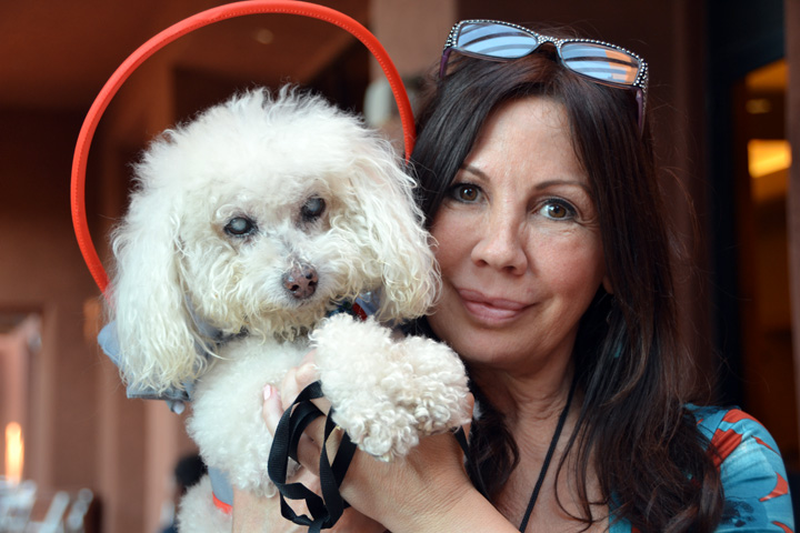 Prince and Silvie, founder of Muffin's Halo for Blind Dogs, at BlogPaws 2016