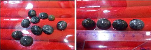 Jual Batu Mulia, Batu Cincin Dan Batu Permata Asli Kalimantan
