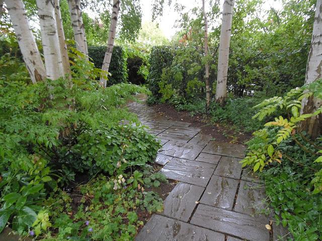 Country Garden, kamienna ścieżka w leśnym ogrodzie