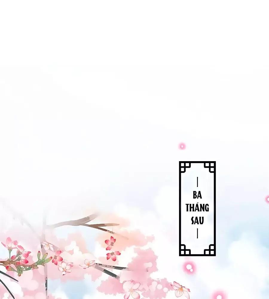 Thịnh Thế Lê Hoa Điện Chapter 91 - Trang 15
