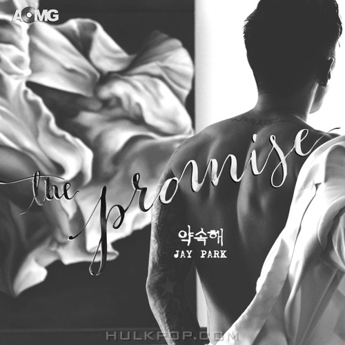 Jay Park – The Promise – Single (ITUNES PLUS AAC M4A)