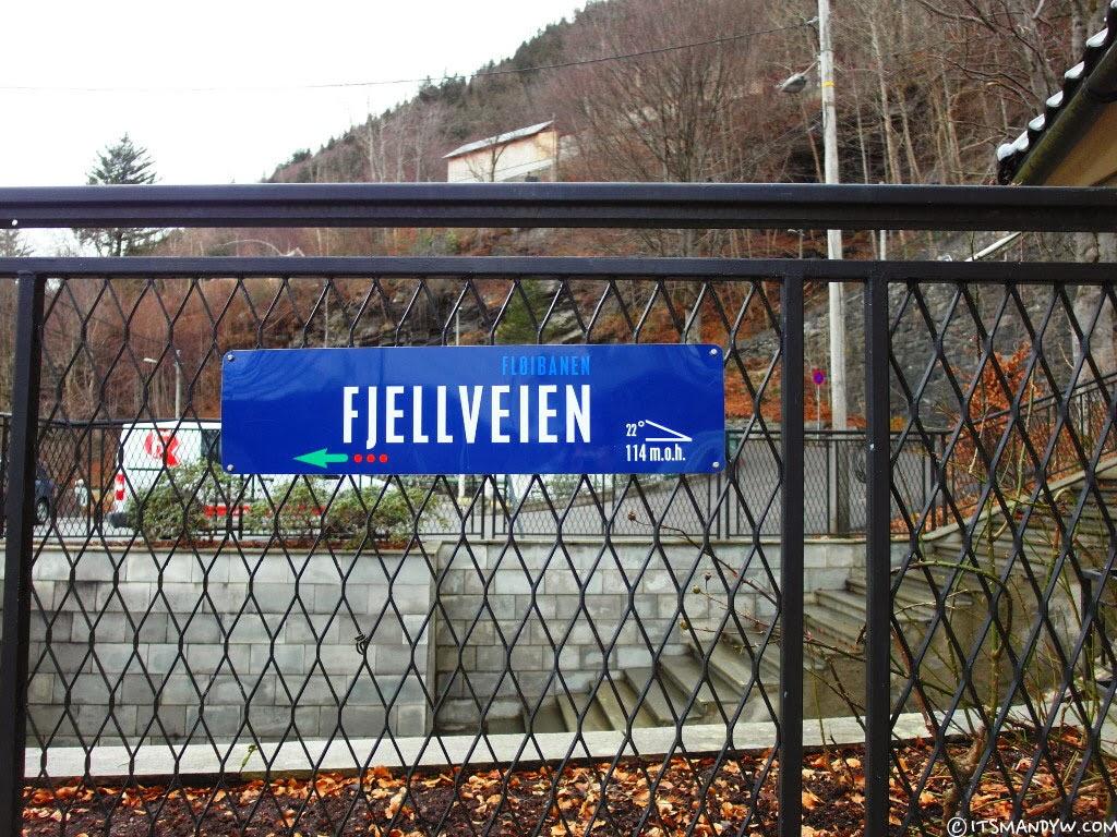 Mount Fløyen