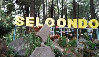 Tempat Wisata Baru Taman Hutan Selondo