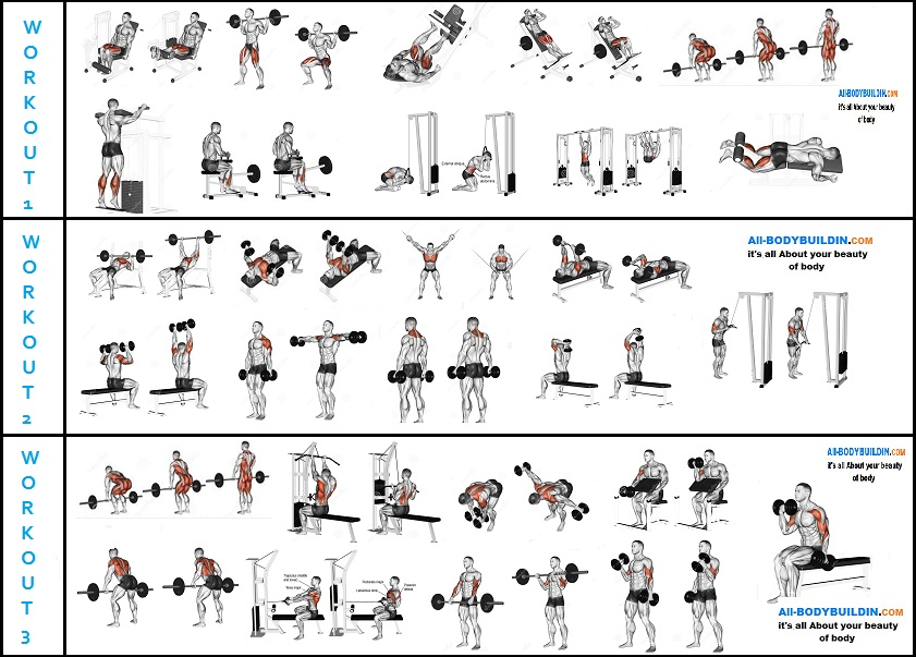 A Serious 6-Week Mass Building Routine For Serious Lifters ...