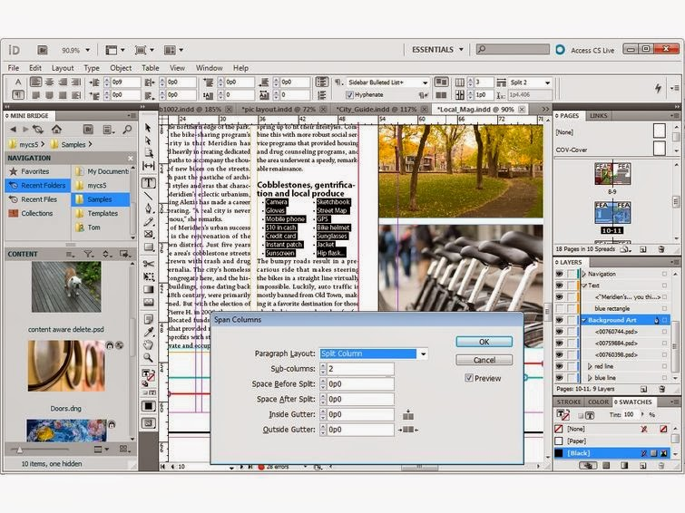 Adobe InDesign CS5 Portable Full Version  asimBaBa | Free
