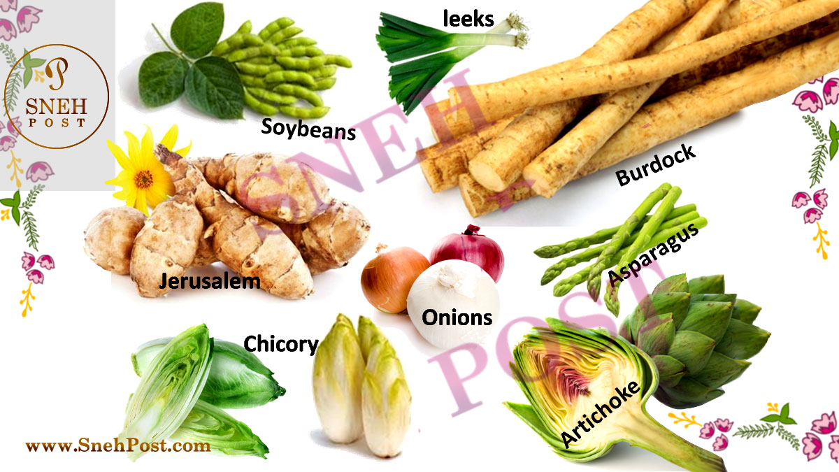 Fiber nutrient-rich vegetables: Different types of vegetables as dietary fiber rich food sources (Images of fiber rich vegetables such as leaks, jerusalem, soybeans, chicory, asparagus, onions, burdock, artichoke)