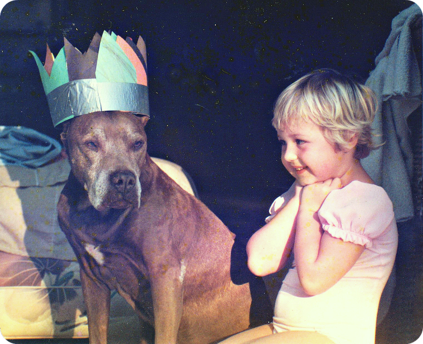 Rusty, the rescued pit bull celebrates his heart girl's birthday