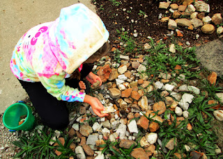 "Tessa has long been infatuated with rocks. For years, she has picked up ""special"" rocks on our walks to and from the mailbox. So, for the ""Rock Hounds"" portion of this lesson, she went straight to her ""rock garden"" to collect samples."