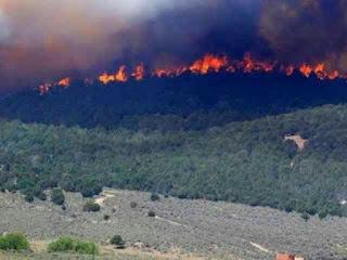 Kebakaran Gunung Lawu, 400 Pendaki Terjebak di Puncak Hargo Tiling