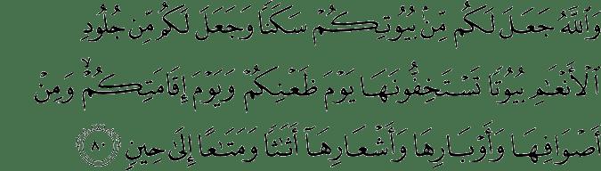Surat An Nahl Ayat 80