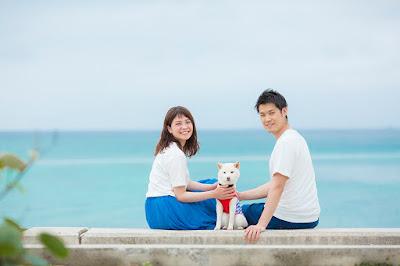沖縄 ロケーションフォト 犬