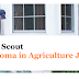 Pest Scout-Diploma in Agriculture Job