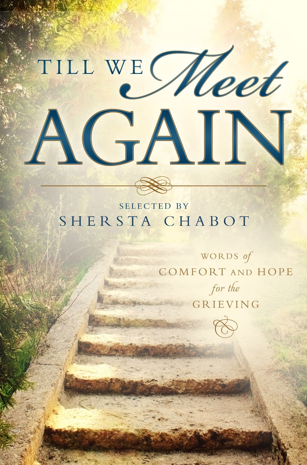 until we meet again book report