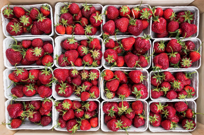 Strawberries from a Farmer's Market