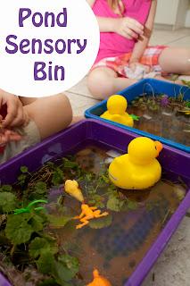 Pond Sensory Bin
