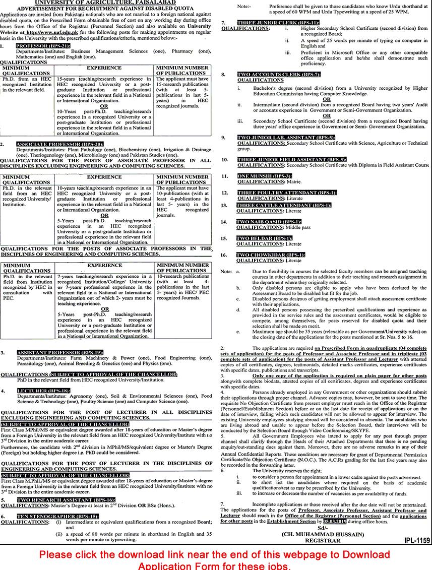 Job in Faisalabad