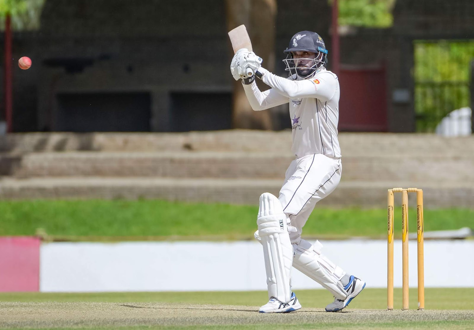 Another second innings half century from Cody Chetty helped the Hollywoodbets Dolphins rescue a draw against the World Sports Betting Cape Cobras in their CSA 4-Day Domestic Series match at the Pietermaritzburg Oval on Thursday.