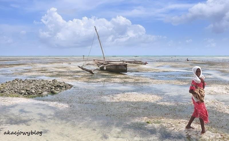 Zanzibar - skrawek raju między Paje i Jambiani.