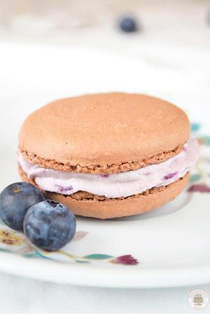 recetario-dulce-19-recetas-arandanos-macarons-chocolate