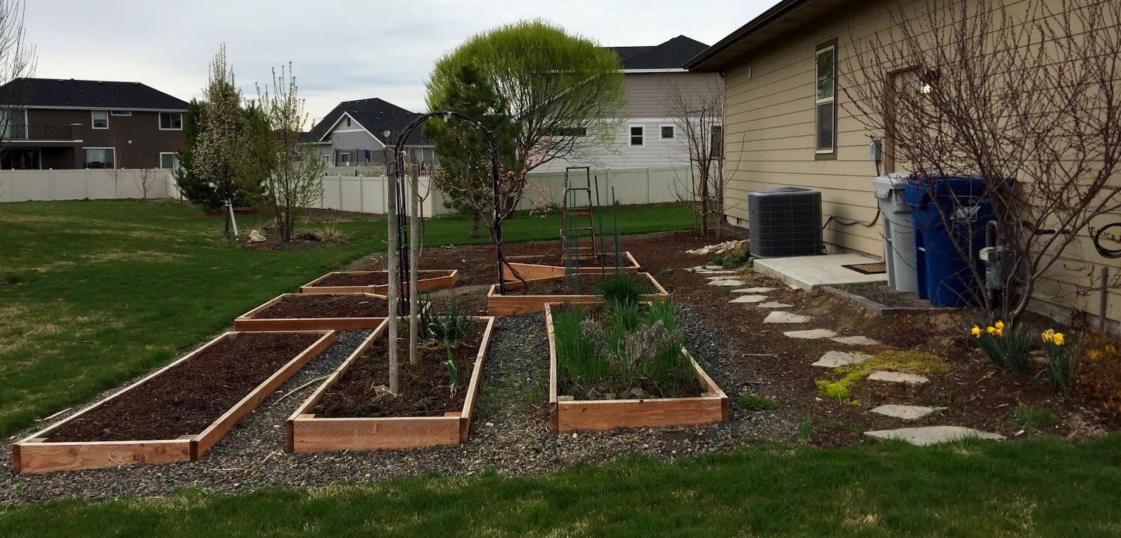 Pence Garden -- Prunus Persica